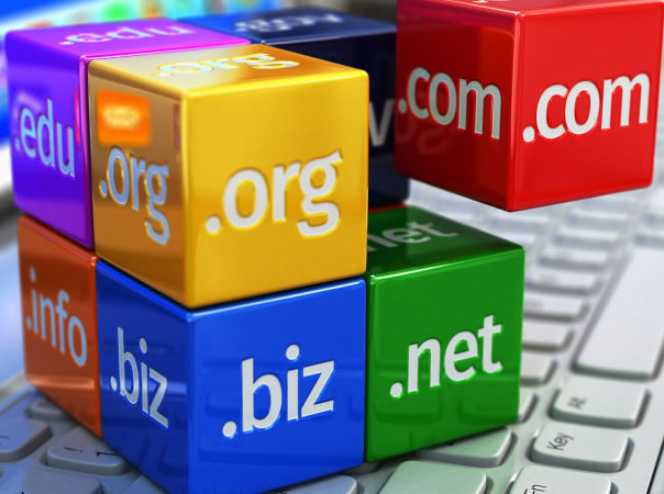 domain regisration and hosting services